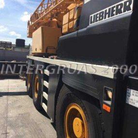 ltm105531-4-intergruas2000-600x800