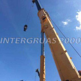 ltm105531-5-intergruas2000-600x800