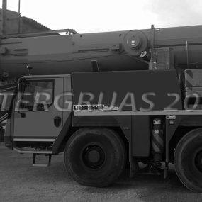 LIEBHERR-LTM-1130-5-(6)